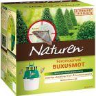 buxusmot-bestrijden-Naturen-feromoonval-buxus