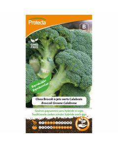 broccoli-zaden-groene-calabrese-moestuinzaad-groente-zaad-ecostyle-protecta