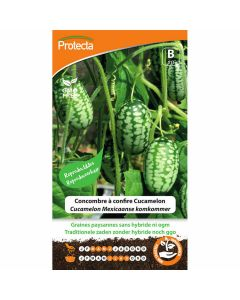 mexicaanse-komkommer-zaden-cucamelon-muismeloen-kweken-teelt-groentezaad-protecta-biologisch-ecostyle