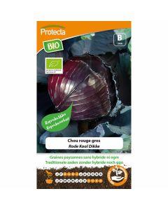 rode-kool-zaaien-groentezaad-moestuin-dikke-protecta-ecostyle-kweken-moestuin-biologisch-zaadvast