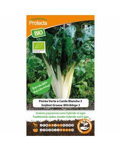 snijbiet-zaden-groene-witribbige-3-biologisch-3-gram-Protecta-ecostyle-zaadvast-reproduceerbaar-groentezaden