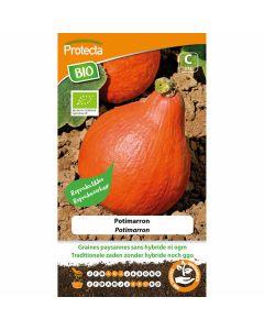 potimarron-pompoenzaden-groentezaden-zaaien-kweken-eenvoudig-beginnende-tuinier-biologisch-protecta-ecostyle