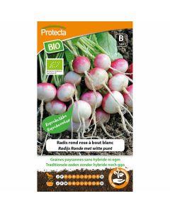 radijs-zaad-groentezaden-protecta-ecostyle-ronde-met-witte-punt-biologisch-bio-gecertificeerd-radijsjes-kweken